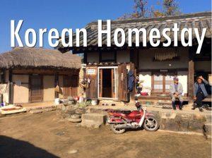 Homestay ở Hàn Quốc