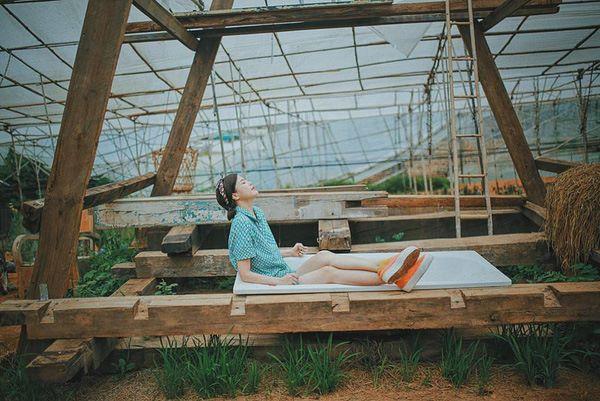 Du lịch Đà Lạt - Tre's House homestay như thế nào