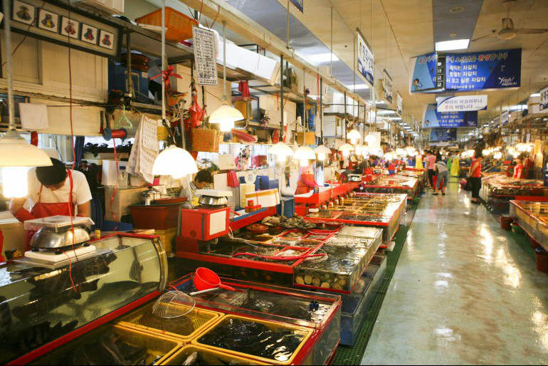 Chợ cá du lịch Hàn Quốc tự túc